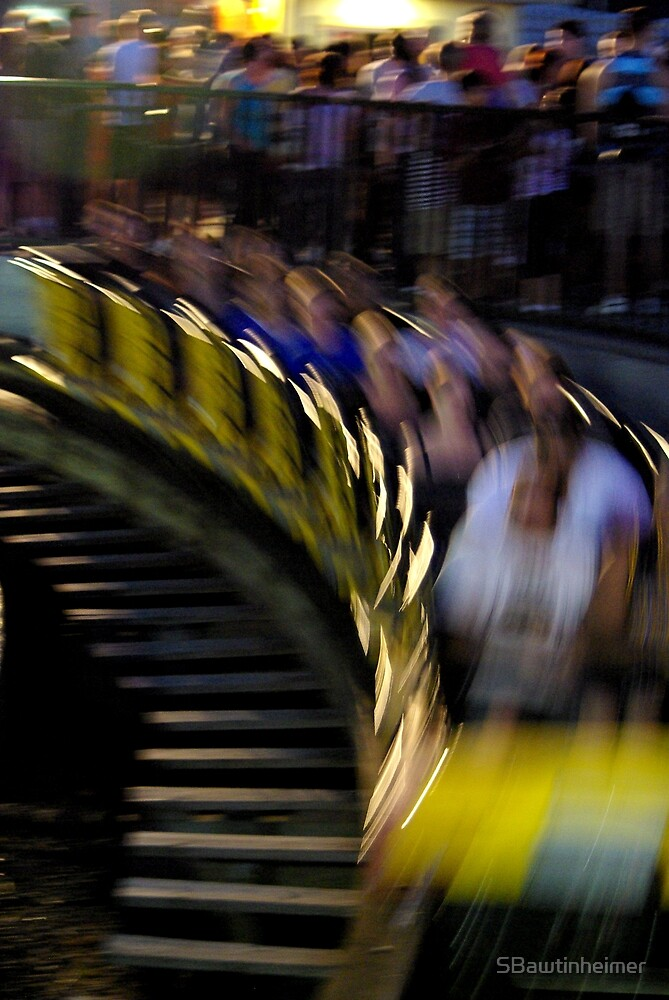 The Wooden Coaster by Sheri Bawtinheimer