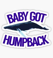 Baby Got Humpback Sticker