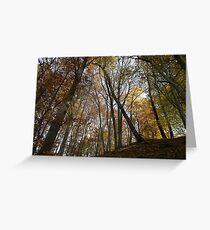 autumn in the deciduous forest Greeting Card