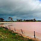 The Pink Lake by Eve Parry