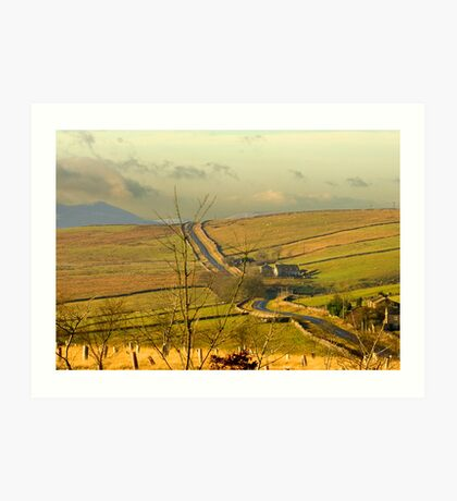 Dales Country Road Art Print