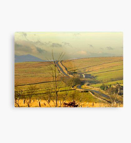 Dales Country Road Metal Print