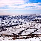 Farndale in Winter by Trevor Kersley