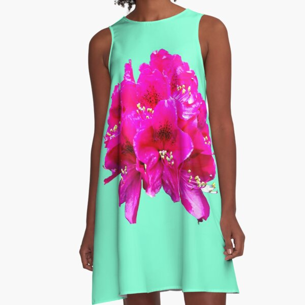 Rhododendron on an aqua menthe background A-Line Dress