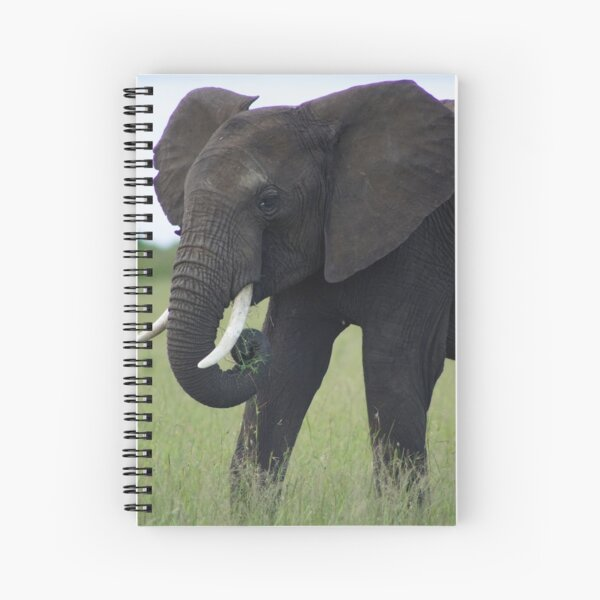 An African Elephant in Kenya Spiral Notebook