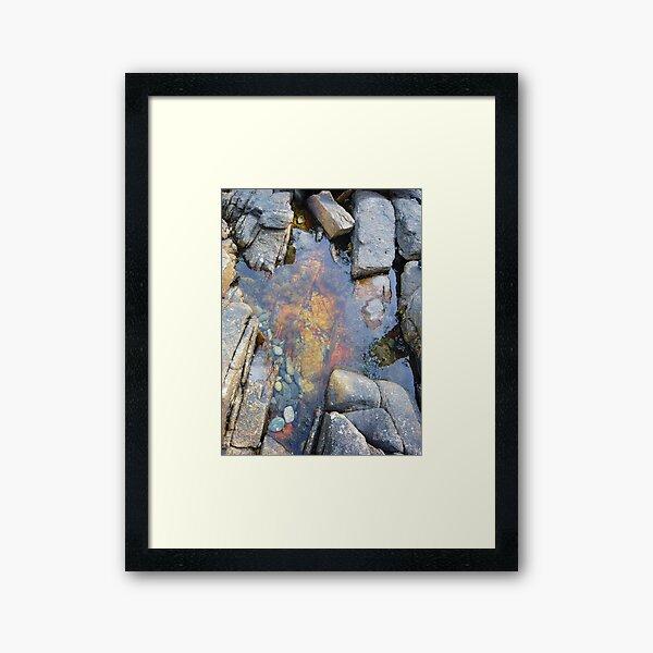 Landscape Photography - Acadia 02 Framed Art Print