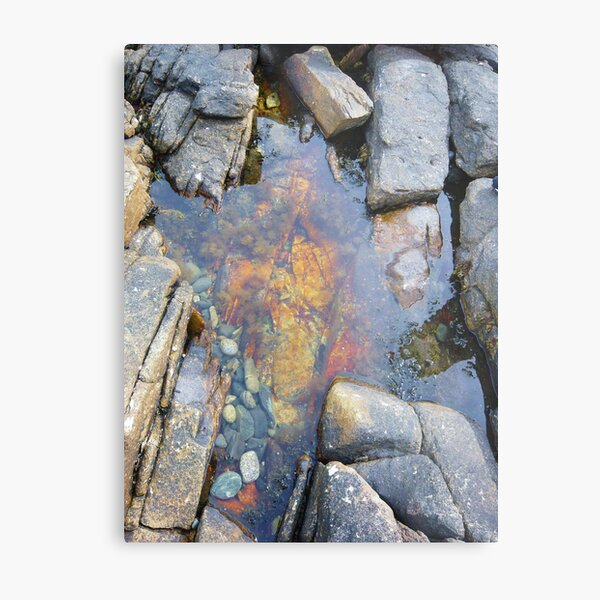 Landscape Photography - Acadia 02 Metal Print