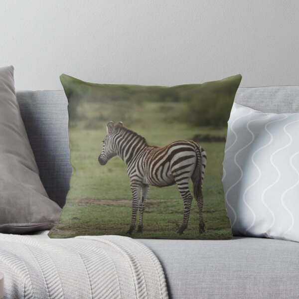 Young Zebra in the Mara Throw Pillow