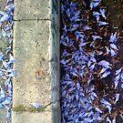 Lavender by Ruth LeFaive