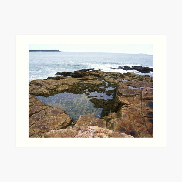 Landscape Photography - Acadia 03 Art Print