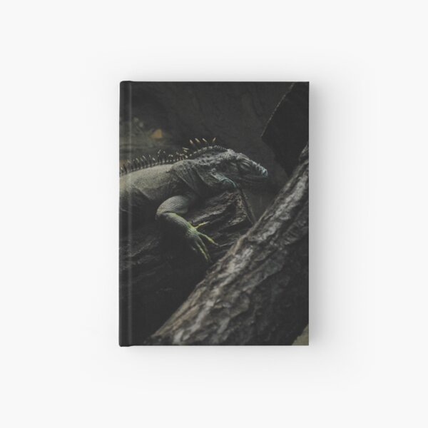 A Green Iguana Hardcover Journal