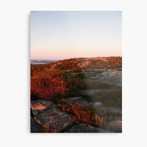 Landscape Photography - Acadia 08 Metal Print