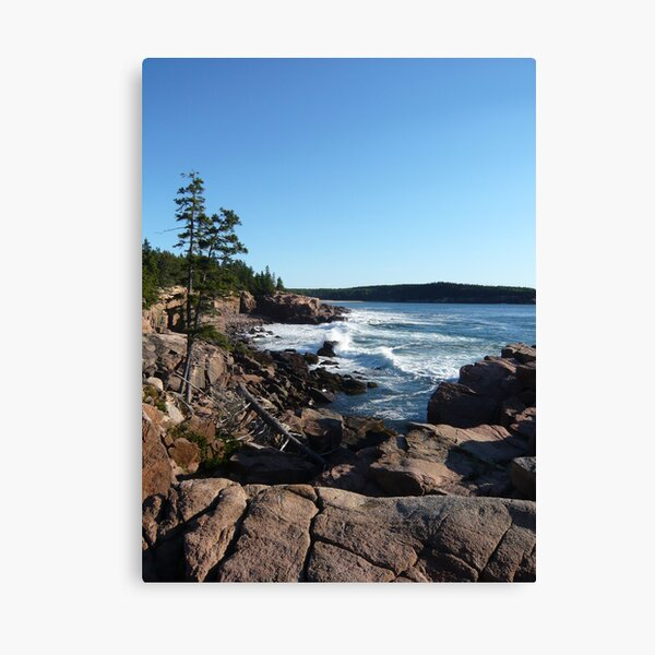 Landscape Photography - Acadia 09 Canvas Print