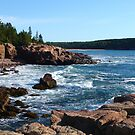 Landscape Photography - Acadia 10 by Samantha Haney Press