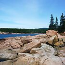 Landscape Photography - Acadia 12 by Samantha Haney Press