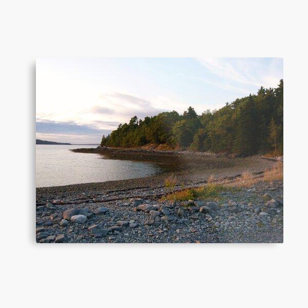 Landscape Photography - Acadia 15 Metal Print