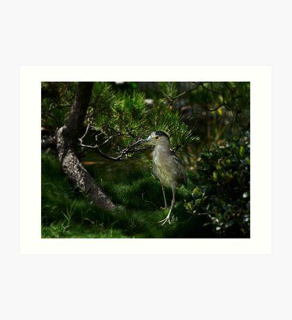 Heron schaut sich neue Ausgrabungen an Kunstdruck