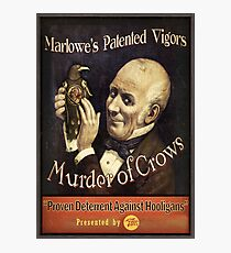 BioShock Infinite – Murder of Crows Poster Photographic Print