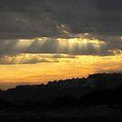 Sunrise  by Gloria Abbey