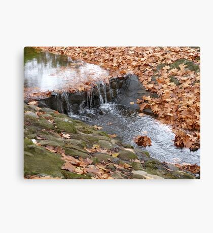 Autumn in Glen Innes Canvas Print