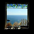 Room With View by artisandelimage