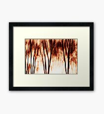 shadows of trees I Framed Print