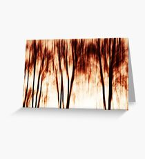 shadows of trees I Greeting Card