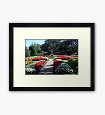 Late Summer In Lincoln Park Framed Print