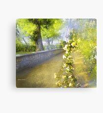 Aranjuez 3 Canvas Print