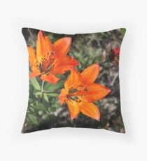 Rocky Mountain Lily Throw Pillow