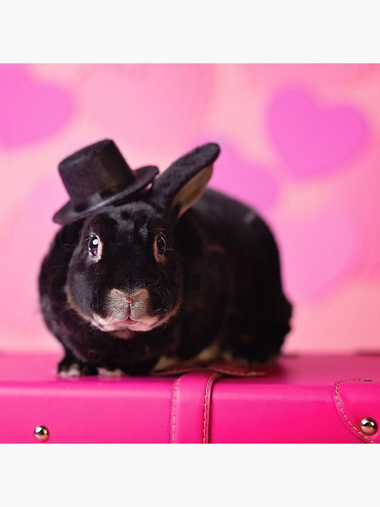 Valentine Bunny Rabbit by lhezlep