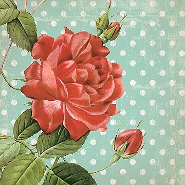 Shabby Chic Floral by CalicoCollage
