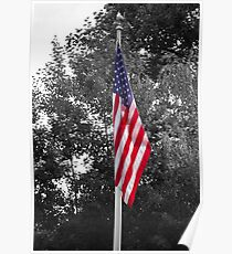 Color Flag in a Black and white world Poster