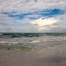 Storm Surf by Frank Bibbins