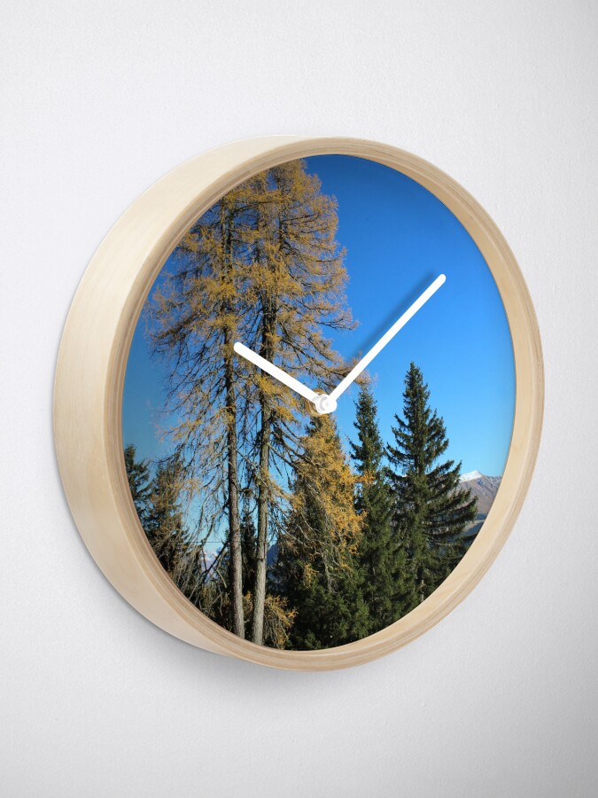 Alternative Ansicht von  Brambrüesch, Wald im Herbst Uhr