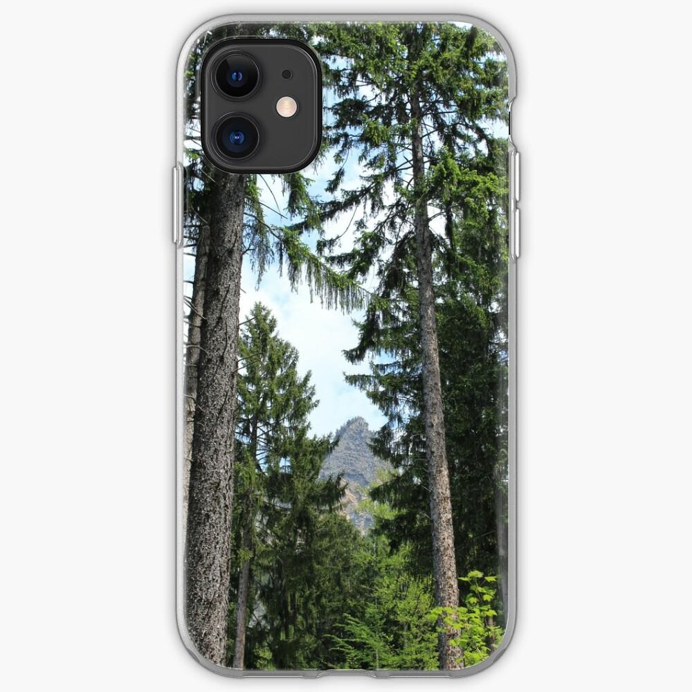 Chur, Bündner Wald, Fürstenwald iPhone-Hülle
