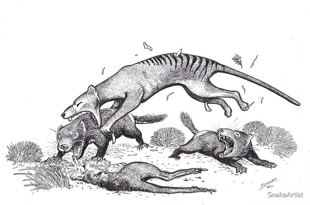 Thylacine attacking devils by SnakeArtist