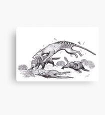 Thylacine attacking devils Canvas Print