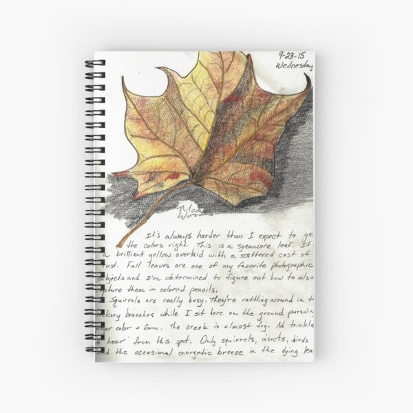 Nature Sketching Day 3- Yellow Sycamore Leaf Spiral Notebook