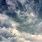 stormy clouds by Marianna Tankelevich