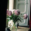 Flowers in the Window by babibell