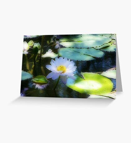 Water Lily Orton effect Greeting Card