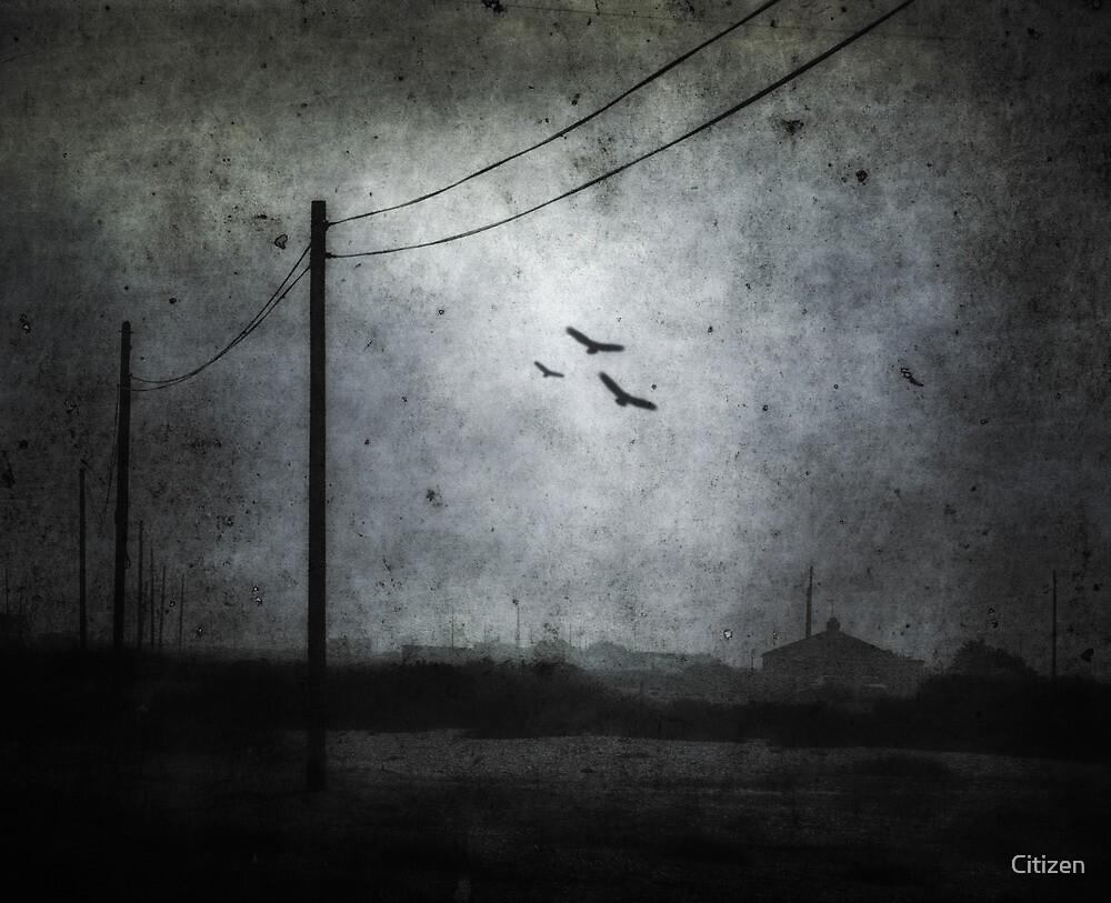 Descending Darkness by Nikki Smith