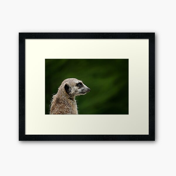 The Feelin' that someone's watching you Framed Art Print