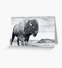 Westward Stance Greeting Card