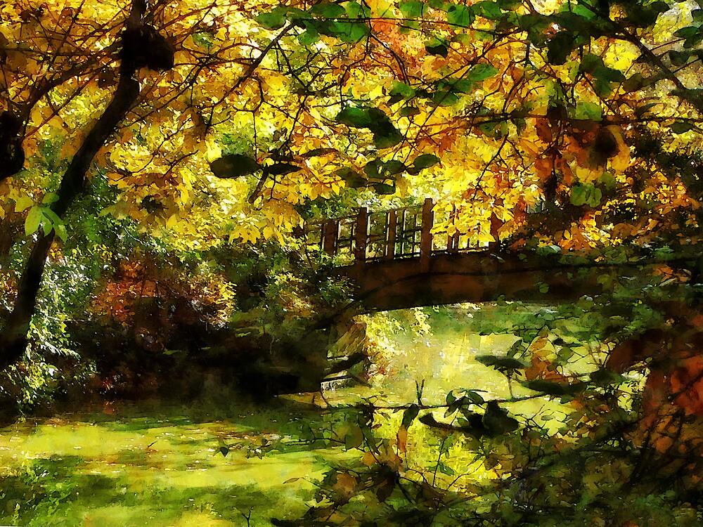 Foot Bridge by Susan Savad