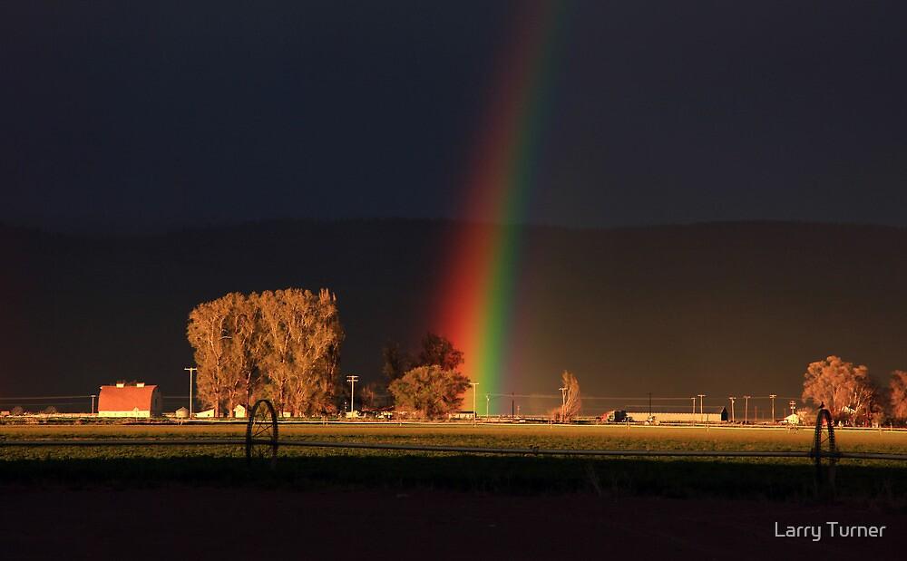 Summer Rainbow by Larry Turner