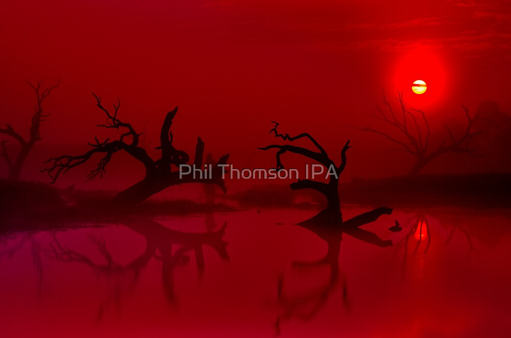 """""""Shrouded Dawning"""" by Phil Thomson IPA"""