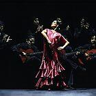 Bailarina Orgullosa del Flamenco by Richard Young