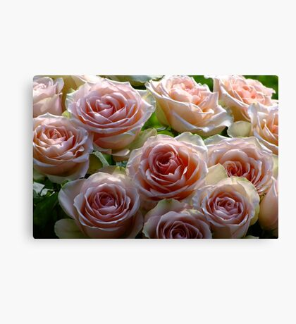 A Gift of Roses Canvas Print